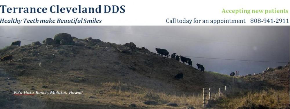 Terrance Cleveland DDS – Honolulu Family Dentist